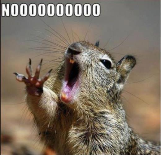 Noooooooooooo! - pichars.org
