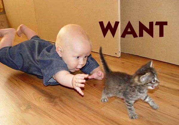 want - pichars.org