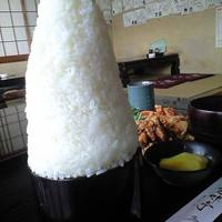 proper amount of rice