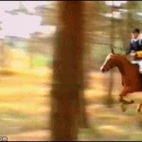 horse riding failure