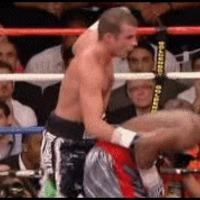 no raep boxing