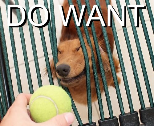 do want - pichars.org