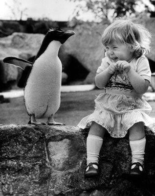 cute  - pichars.org