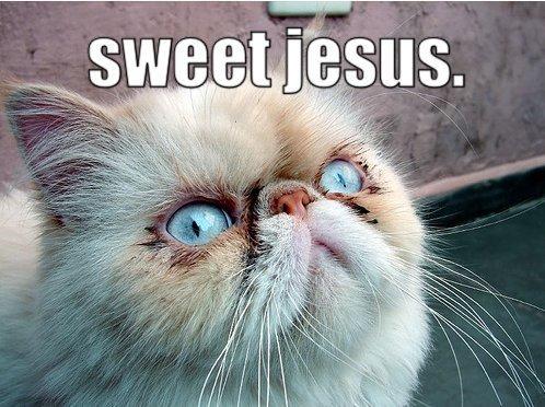 sweet jesus