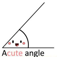 accute angle