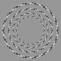 only 4 circles, none touch