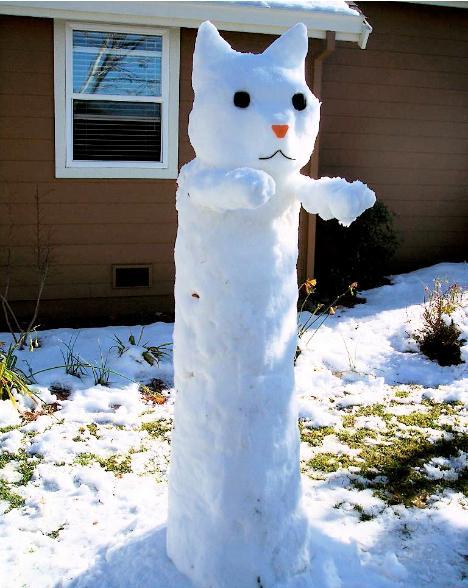 snow longcat - pichars.org