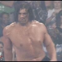 wrestling fan lol