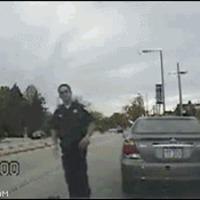 hit cop car