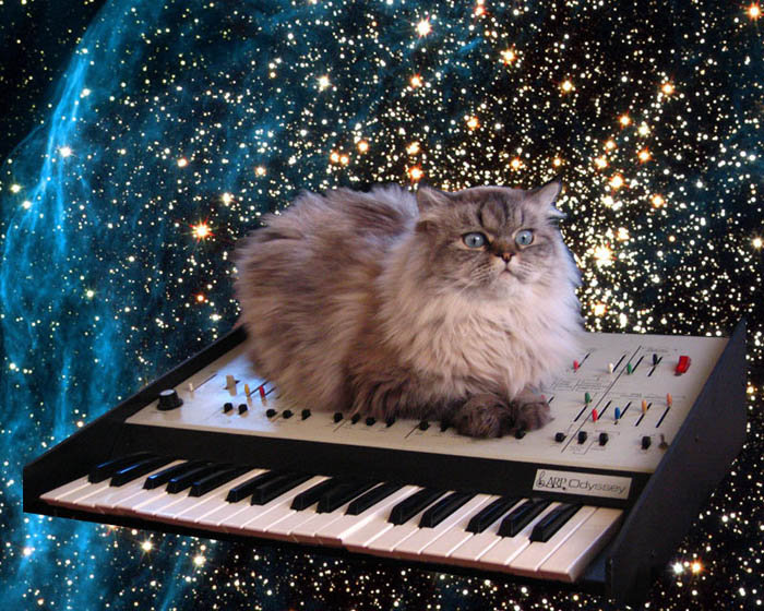 space cat synth - pichars.org