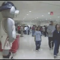 mascot owned