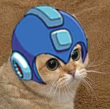 megaman cat - pichars.org