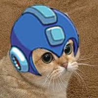 megaman cat