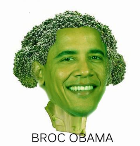 broc omaba - pichars.org