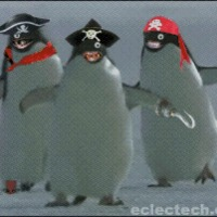 pirate penguins