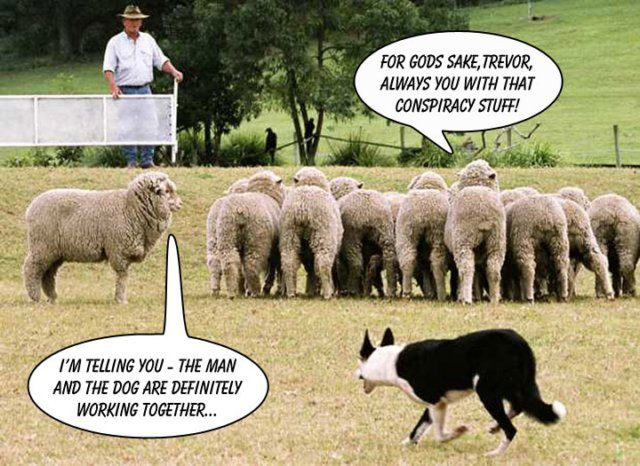 we are sheep - pichars.org