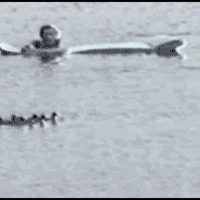 guy scares ducks.. karma