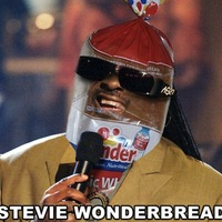 stevie wonderbread