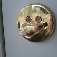 dead bolt face