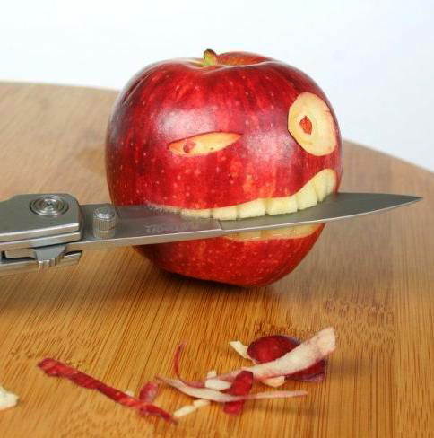 apple piracy