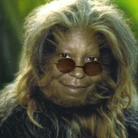 wookie goldberg