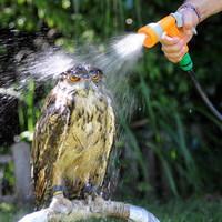 unhappy owl