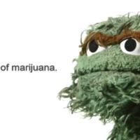i am made of marijuana