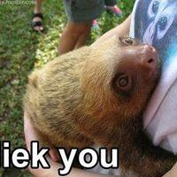 i liek you