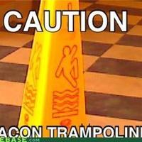 bacon trampoline