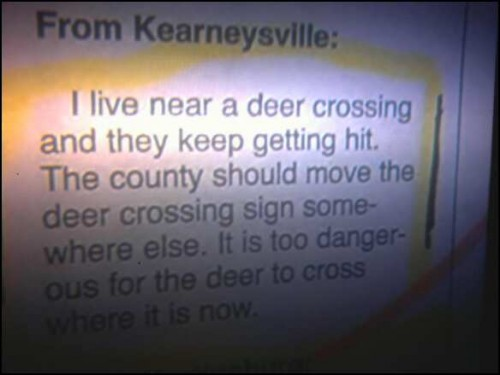 deer crossing - pichars.org