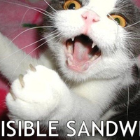 invisible sandwitch