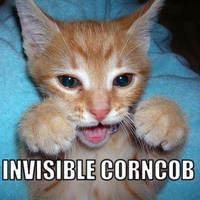 invisible corncob