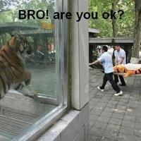 bro are you alright?