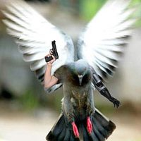 bird with human arms gun