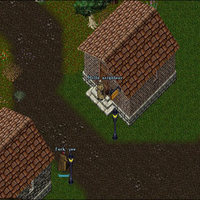 meeting your neighbor, Ultima Online