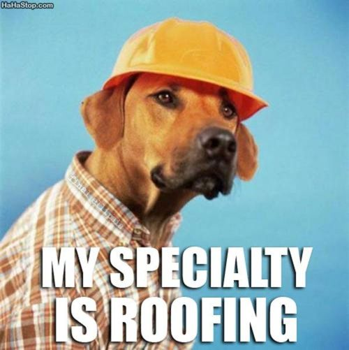 my specialty is roofing
