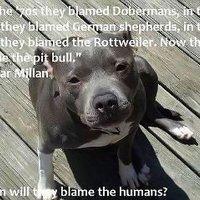 Bad Human!