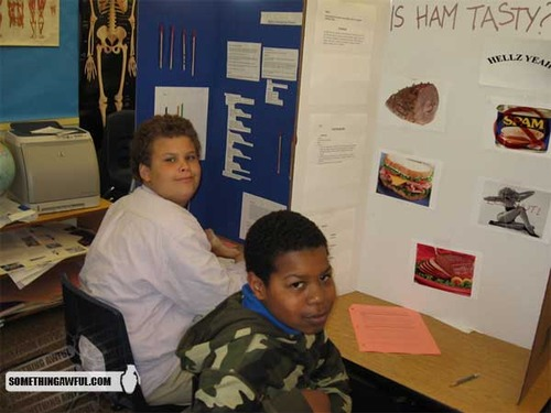 best science fair project ever - pichars.org
