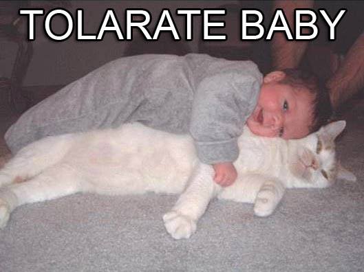 tolerate baby - pichars.org