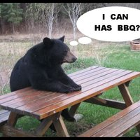 i can has bbq