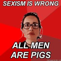 sexism is wrong, all men are pigs
