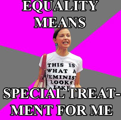 feminist argument on equality