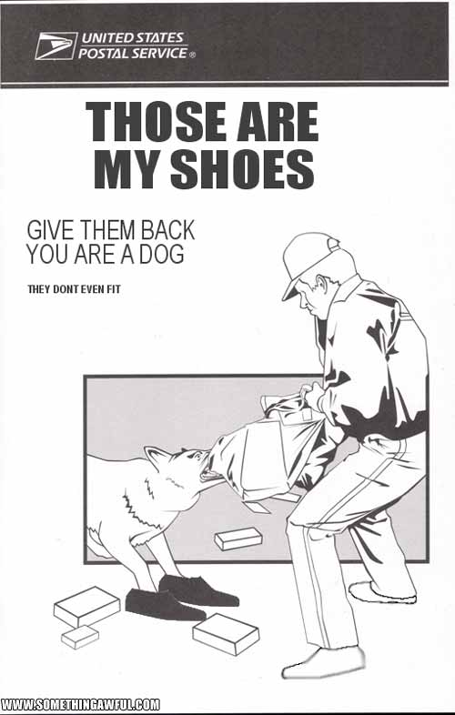 my shoes - pichars.org