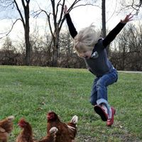 girl attacking chickens