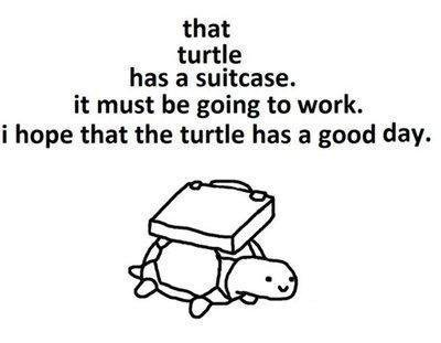 that turtle has a suitcase