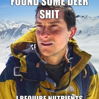 Finding food in the Arctic