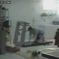 Treadmill terror