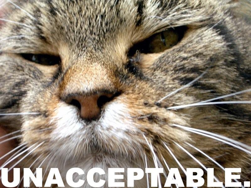 unacceptable - pichars.org