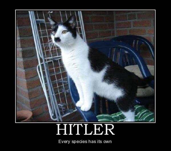 catler - pichars.org