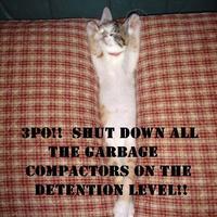 shut down all garbage compactors